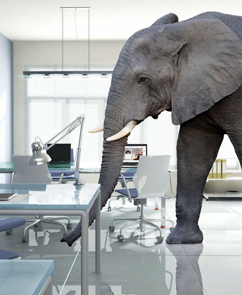 owners-value-report-elephant-in-room